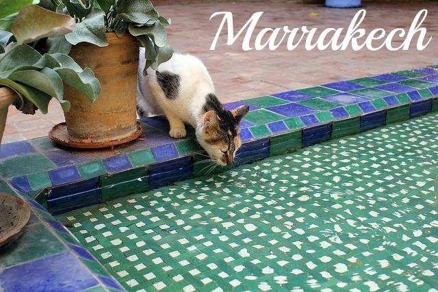 5 jours à Marrakech