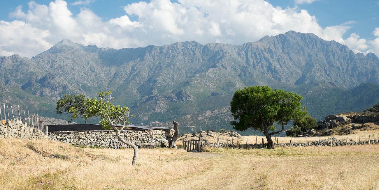 paysage corse far west