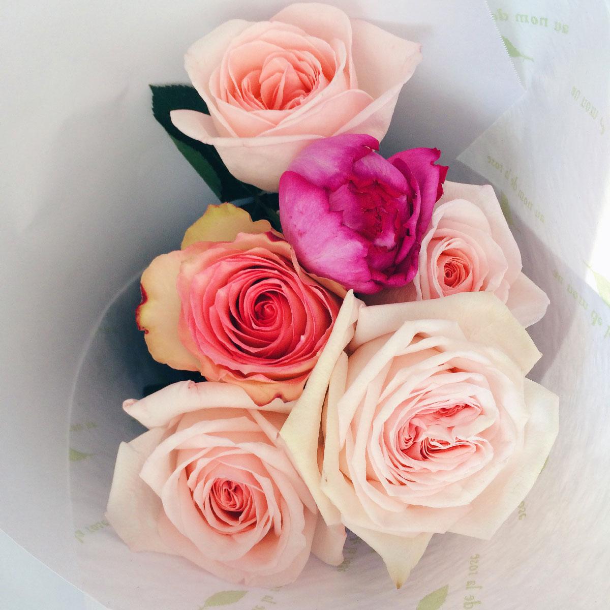 au nom de la rose vincennes