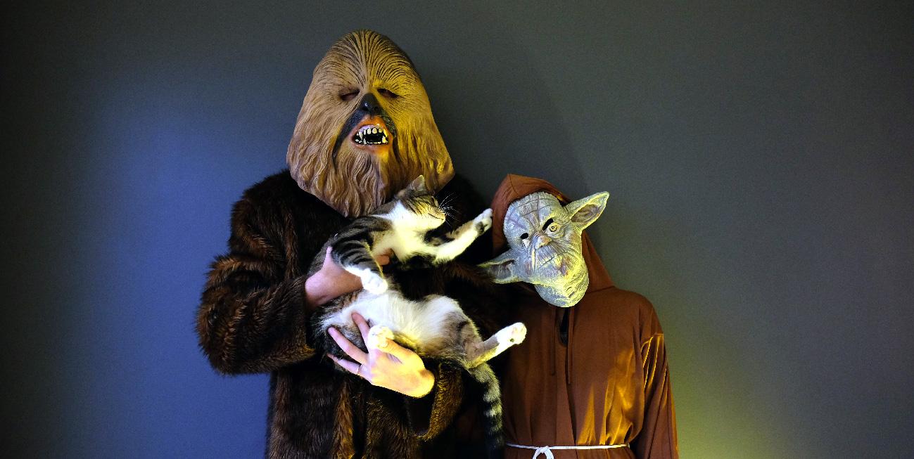 Dimanche Yoda