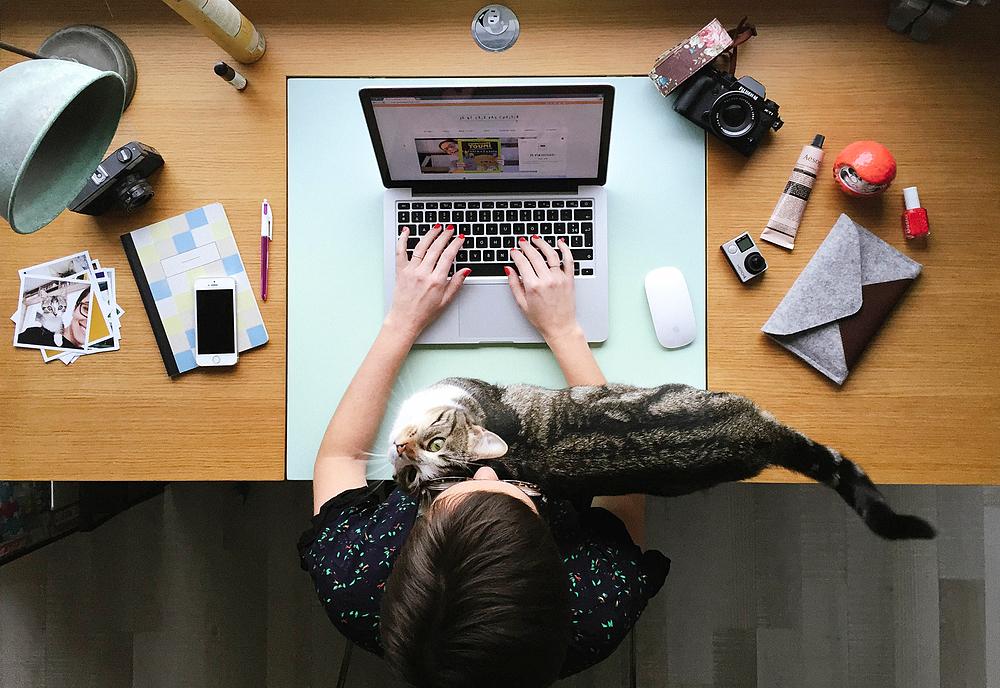 photographe et rédactrice freelance
